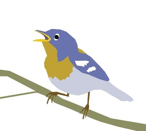 bird_julia