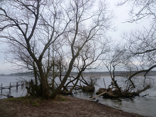 wannsee4