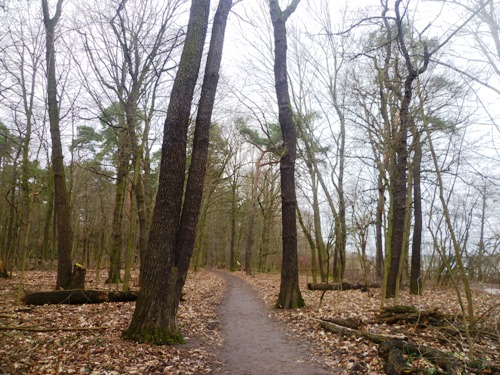 wannsee5